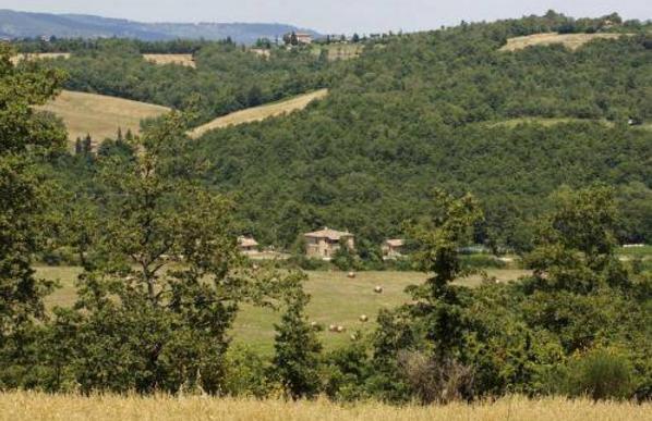 """Tenuta agricola Azienda """"Il Felcino"""" - Città della Pieve (PG)"""